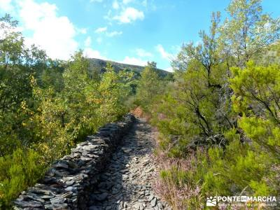 Ocejón - Sierra de Ayllón; viajes semana santa excursiones cerca de madrid rutas de senderismo